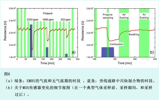 嵌入微反应器系统气体传感器的自检程序(5)